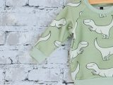 Groene sweater met dino's maat 74